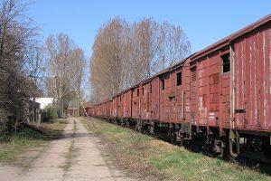 Długi rząd wycofanych wagonów, głównie różne typy Gbs'ów.