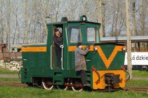 Rogów Wąskotorowy Towarowy - Lyd1-215 jedzie po klasy rumuńskie.