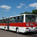 Dąbrowa - #BV99.