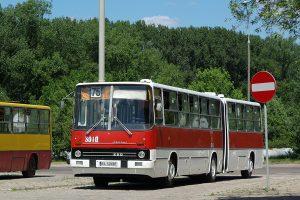Paradna - #BV99.