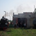 Hala parowozowni wąskotorowej i Px48-1919.