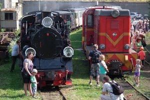 Obie lokomotywy na stacji Gniezno Wąskotorowe.