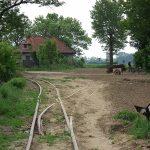 Skręt na nieistniejącą już odnogę Kujawskich Kolei Dojazdowych - Kolej Wrześnińską.