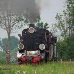 Px48-1919 z pociągiem historycznym we wsi Miroszka.