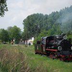 Parwóz Px48-191 na torach towarowych stacji Witkowo.