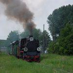 Px48-1919 z pociągiem historycznym na stacji Witkowo.