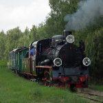 Px48-191 w miejscowości Strzyżewo Witkowskie.